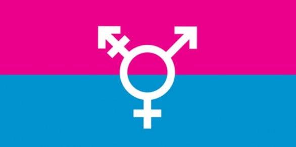 02-bandiera-trans