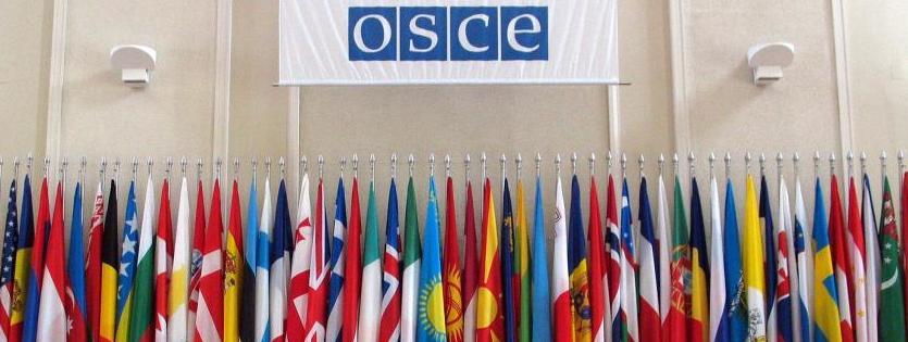 Logo OSCE e bandiere Stati